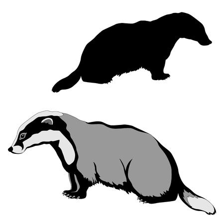pelt: animal badger black silhouette