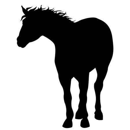 Black horse silhouette 向量圖像