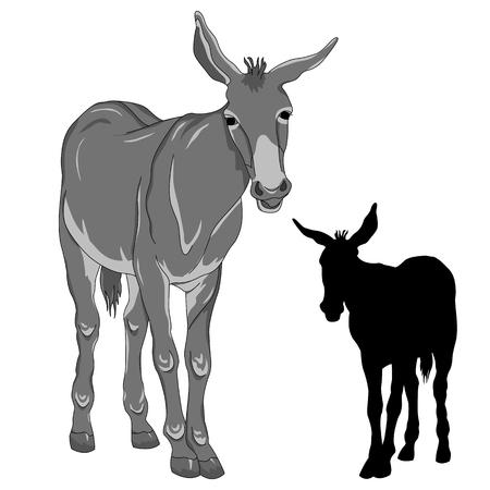 blockhead: donkey black silhouette realistic gray