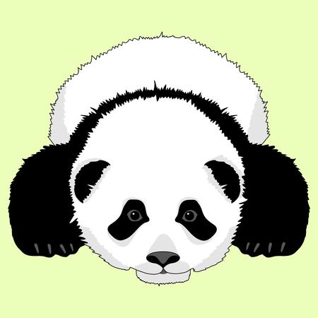 panda bear lying face realistic
