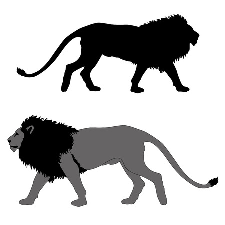male lion go black gray silhouette illustration