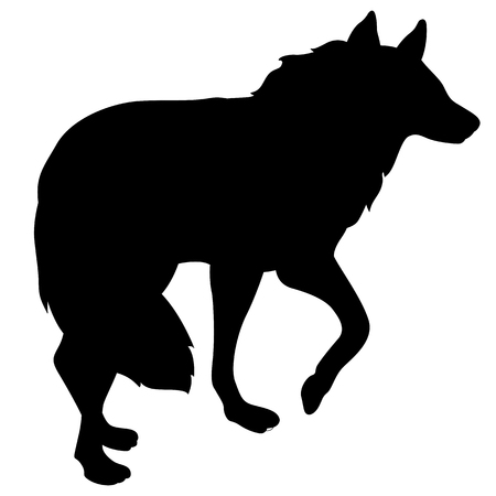 adult wolf standing black silhouette