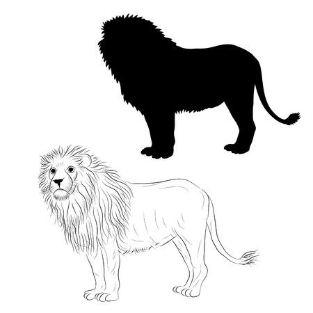 male lion standing black silhouette sketch illustration