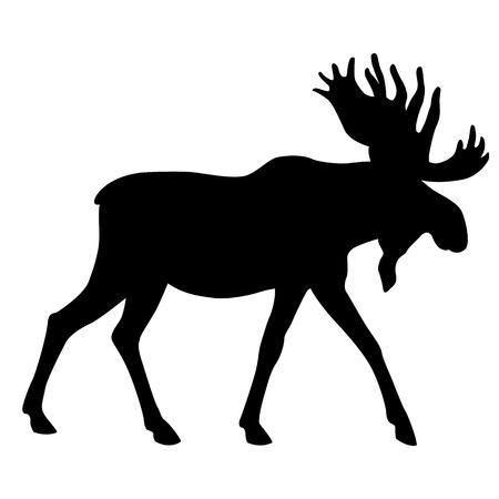 Erwachsener Elch gehen schwarze Silhouette Standard-Bild - 58387812