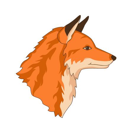 fox red head face realistic vector illustration