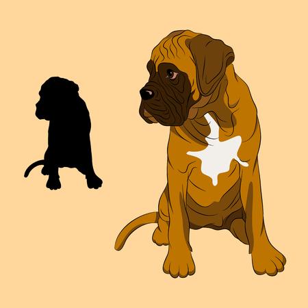 복서 강아지 강아지 현실 일러스트