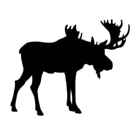 adult moose black silhouette vector illustration Illustration