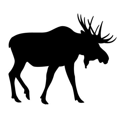 adult moose black silhouette vector illustration 向量圖像