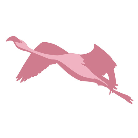Pink flamingo bird flying silhouette Illustration