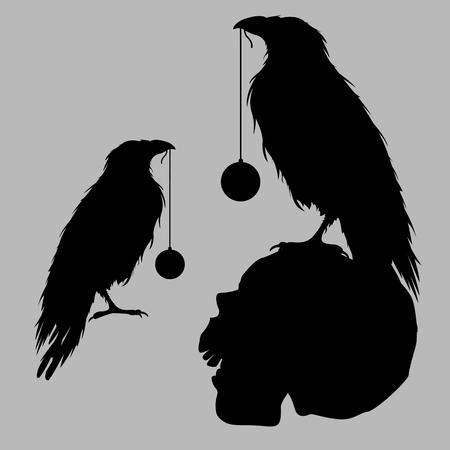 black raven: black raven bird silhouette skull
