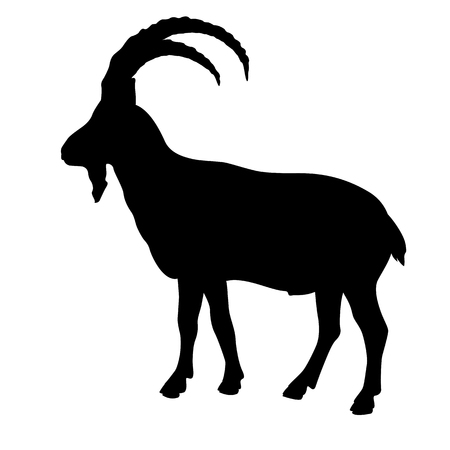 Siberian goat mountain silhouette black
