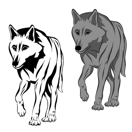 성인 늑대는 현실적인 검은 실루엣 집합입니다.