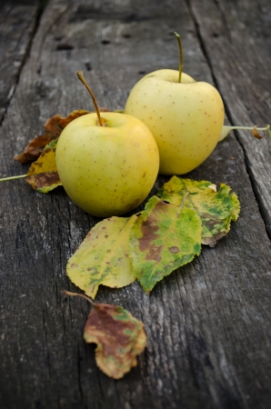 Homegrown apples on wooden background  Stock Photo - 16854963