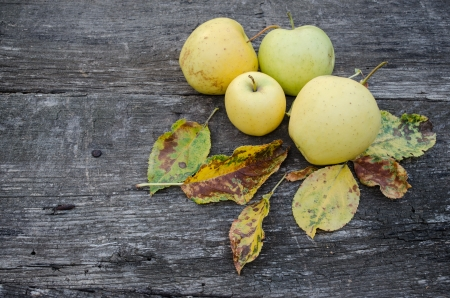Homegrown apples on wooden background Stock Photo - 16854967
