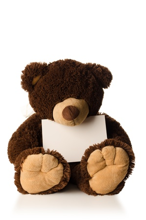 Teddy bear isolated on white, looking down, with a card in lap for your text