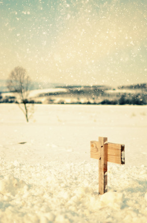 Wooden sign in snow valley with  tree  Winter background   retro feeling