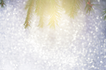 glimmering: Abstract christmas lights on bokeh background with pine tree