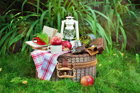 vintage objects: Picnic basket with vintage objects, camera, blanket, dishes, books, outdoors.