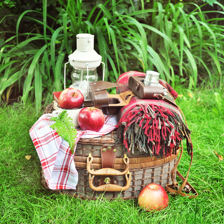objects: Picnic basket with vintage objects, camera, blanket, dishes, books, outdoors.