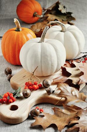 カボチャ。ひょうたん。秋の装飾。感謝祭。選択と集中。