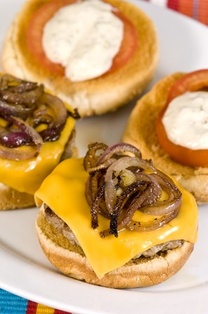 Cheeseburger with fried onions tomato and white sauce Stock Photo - 4233232