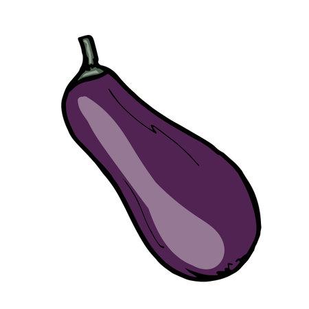 Fresh vegetable eggplant. Healthy food. Growing vegetables. Live vitamins. Summers vegetables. Vector illustration Vektoros illusztráció
