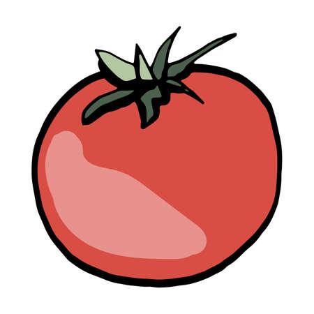 Fresh vegetable tomato. Healthy food. Growing vegetables. Live vitamins. Summer. Vector illustration