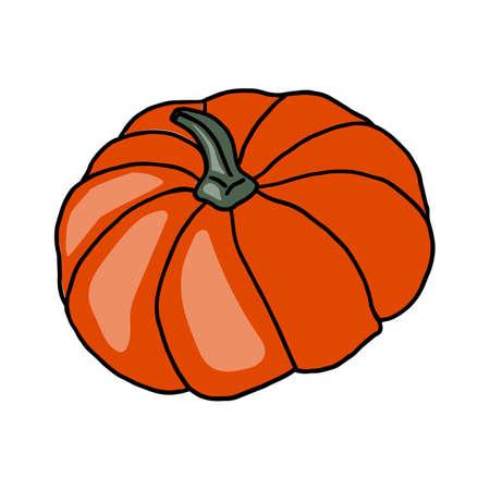 Fresh vegetable Pumpkin. Healthy food. Growing vegetables. Live vitamins. Summer vegetables. Vector illustration.