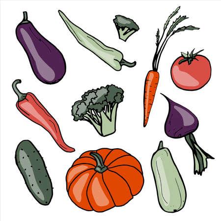 Fresh vegetables. Healthy food. Growing vegetables. Live vitamins. Summer. Eggplant. Pepper. Broccoli. Carrot. Cucumber. Pumpkin. Zucchini. Tomato. Beet. Vector illustration Vektoros illusztráció