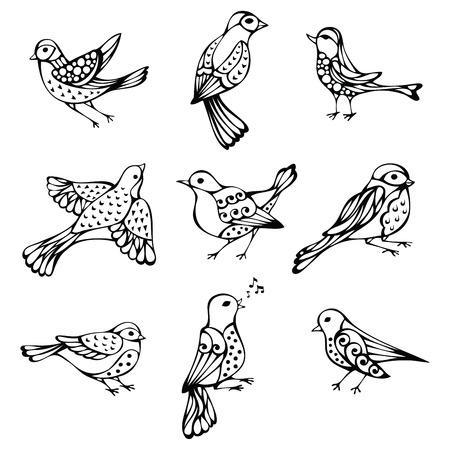 sparrow bird: set of vintage birds. Black ornate birds isolated on white background.