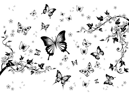 Floral spring black and white background with butterflies.