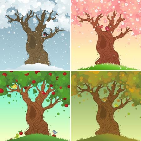 arbol de la vida: Cuatro estaciones. Fourdaysin el árbol ofapple vida. Ilustración del vector. Vectores