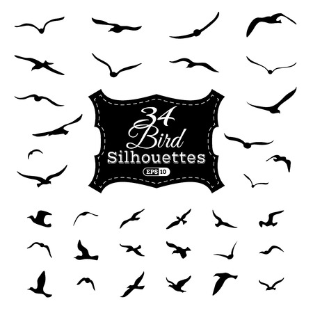 Vector set of bird silhouettes.Black flying seagulls isolated on white background. Illustration