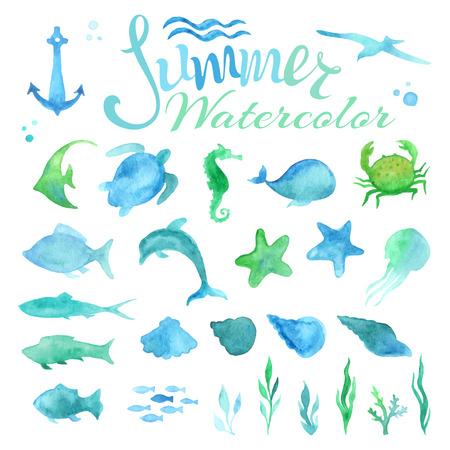 delfin: Wektor zestaw akwareli życia morskiego. Różne ryby, rozgwiazdy, kraby, wieloryb, powłoki, morze koni, meduzy, delfin, żółw, glony, kotwica, fale na białym tle. Ilustracja