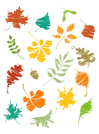 elm: Painted leaves. Bright autumn leaves painted by brush. Birch, elm, oak, rowan, maple, chestnut, acorn, aspen isolated on white background. Illustration