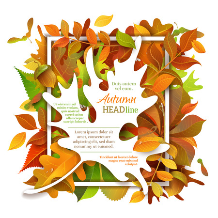there: Bright autumn background. Vector backdrop. Fall template. There is place for your text on white area.