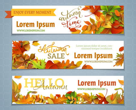 text: Vector set of autumn banners. Three templates for your design. Various bright fall leaves and hand-lettering. There are places for your text on white area. Illustration