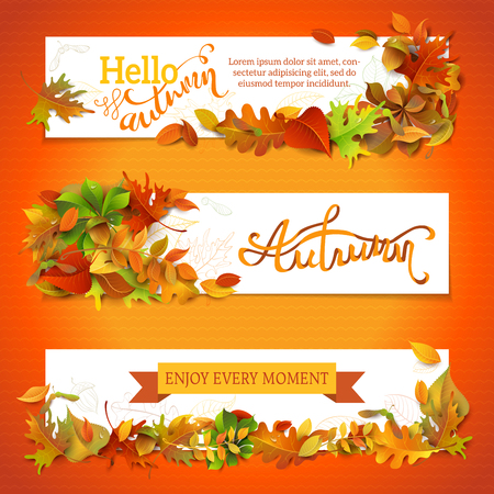 three leaves: Horizontal fall banners set. Three vector templates. Bright autumn maple, oak, birch, elm, rowan, chestnut, aspen leaves and acorn. Hand-lettering elements. There are places for your text on white area.