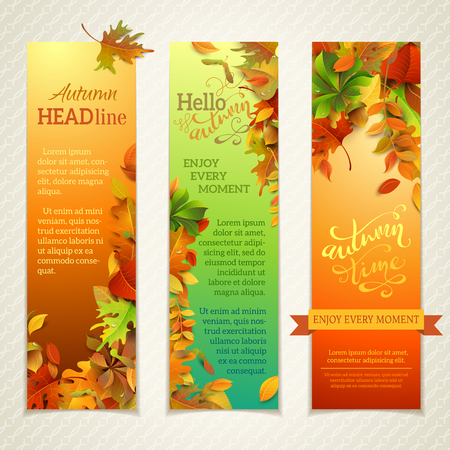 vertical: Vector set of bright vertical autumn banners. Three design templates. Fall maple, oak, birch, elm, rowan, chestnut, aspen leaves and acorns on bright background.  Hand-written lettering elements. There are places for your text.