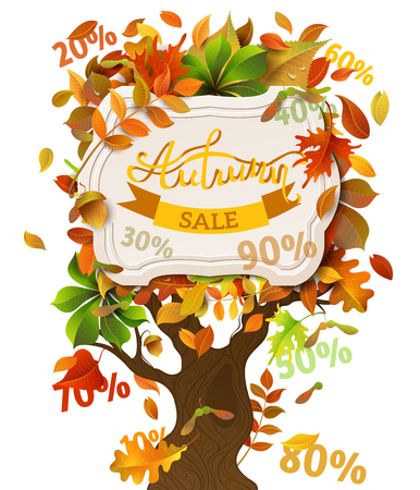 oak: Autumn Sale Illustration. Bright colourful autumn birch, elm, oak, rowan, maple, chestnut, aspen leaves and acorns on tree. White paper badge on it. Falling sale percents.
