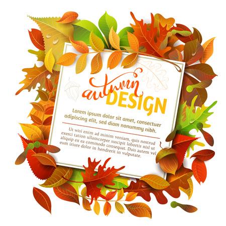 明るい秋の背景。カラフルな秋バーチ、ニレ、オーク、ナナカマド、カエデ、栗、ポプラの葉と白い背景のドングリ。それらの紙の白の正方形のシ