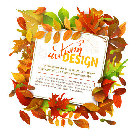 Bright Fall Background. Colourful autumn birch, elm, oak, rowan, maple, chestnut, aspen leaves and acorns on white background. White square sheet of paper on them. You can place your text in the center.