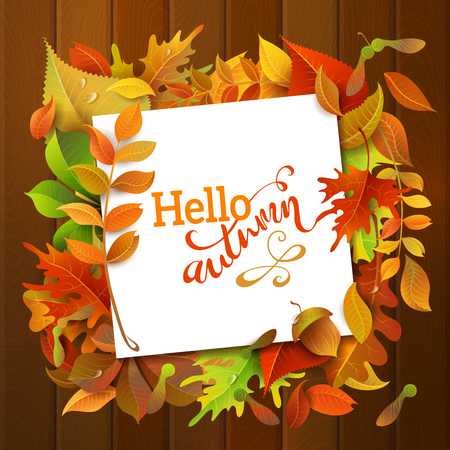 text frame: Hello Autumn Background. Bright colourful autumn birch, elm, oak, rowan, maple, chestnut, aspen leaves and acorns on wood background. White square sheet of paper on them. You can place your text in the center. Illustration