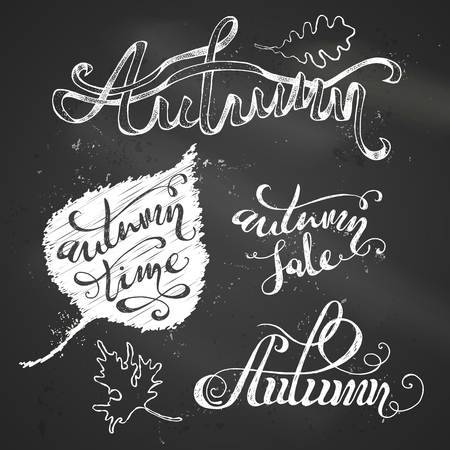 chalk board: Chalk Autumn Lettering. Hand-written words and leaves on blackboard background. Autumn. Autumn Sale. Autumn Time. Illustration