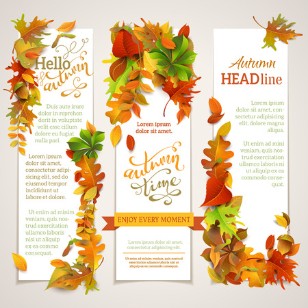 Vector set of vertical autumn banners. Three vector templates. Bright autumn maple, oak, birch, elm, rowan, chestnut, aspen leaves and acorn. Hand-lettering elements. There are places for your text on white area.