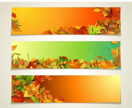 Vector set of bright horizontal fall banners. Three design templates. Autumn maple, oak, birch, elm, rowan, chestnut, aspen leaves and acorns on bright background. There are places for your text.