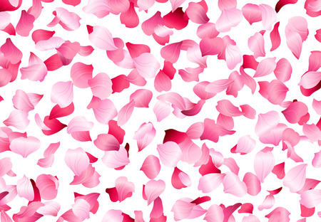 A lot of pink petals on white background. Nature backdrop.