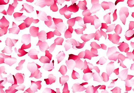 Un grand nombre de pétales roses sur fond blanc. Nature toile de fond.