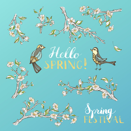 spring festival: White apple blossoms and leaves on tree branches. Birds and hand-written brush lettering. Hello spring! Spring festival.
