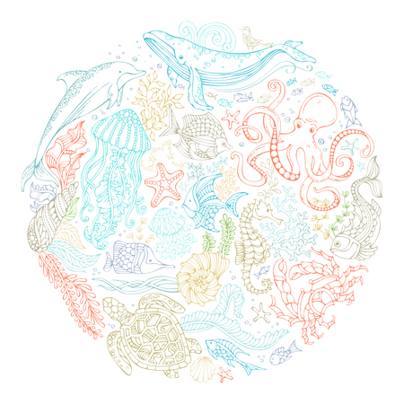cockleshell: Circle vector set of ocean animals and plants contours. Whale, dolphin, octopus, turtle, fish, starfish, crab, shell, jellyfish, seaweed. Underwater sea life. Colourful doodles vector dsign elements.